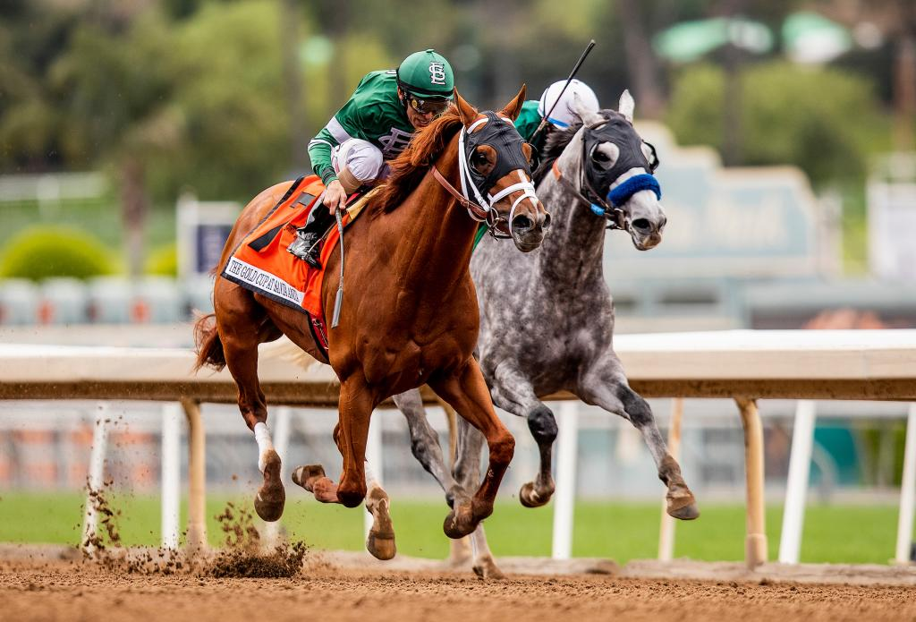2019 Gold Cup at Santa Anita Stakes winner Vino Rosso (Eclipse Sportswire)