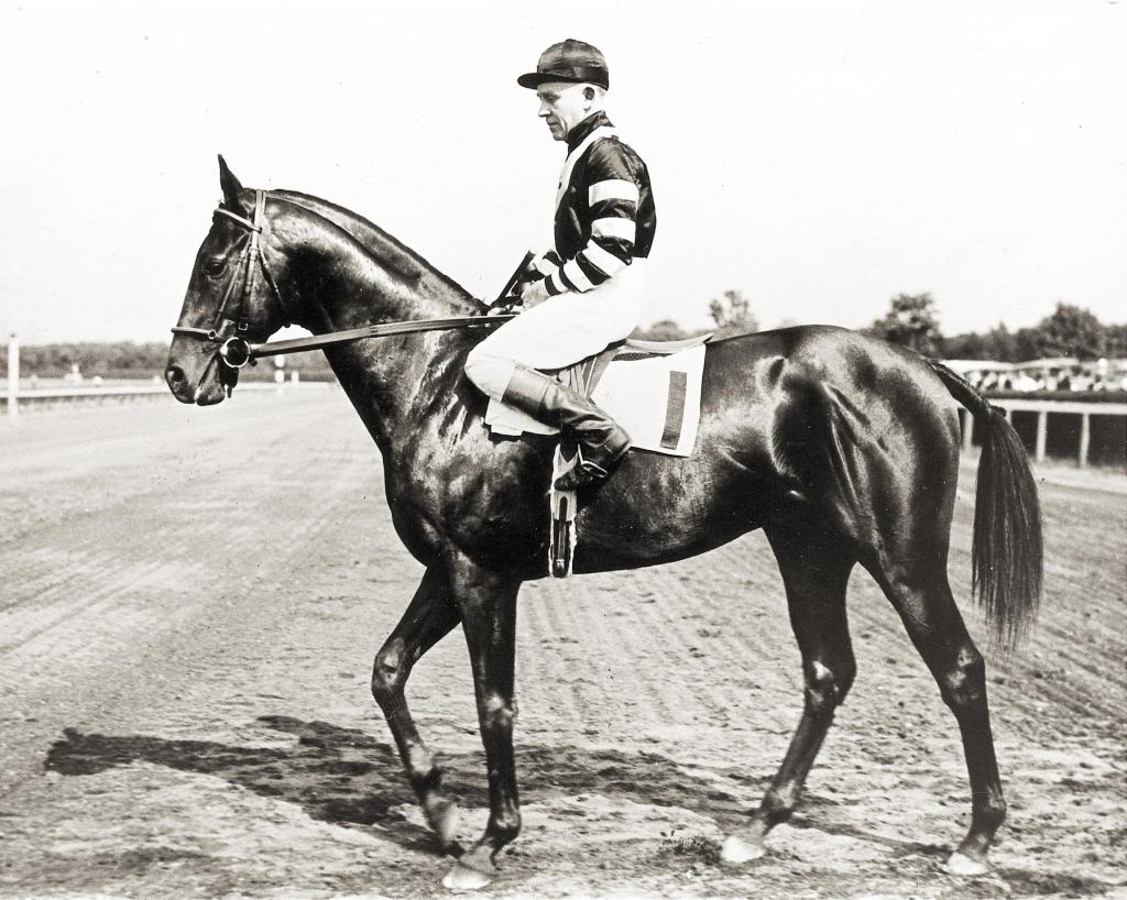 War Admiral went undefeated as a 3-year-old, sweeping the 1937 Triple Crown under jockey Charley Kurtsinger. (BloodHorse Library)