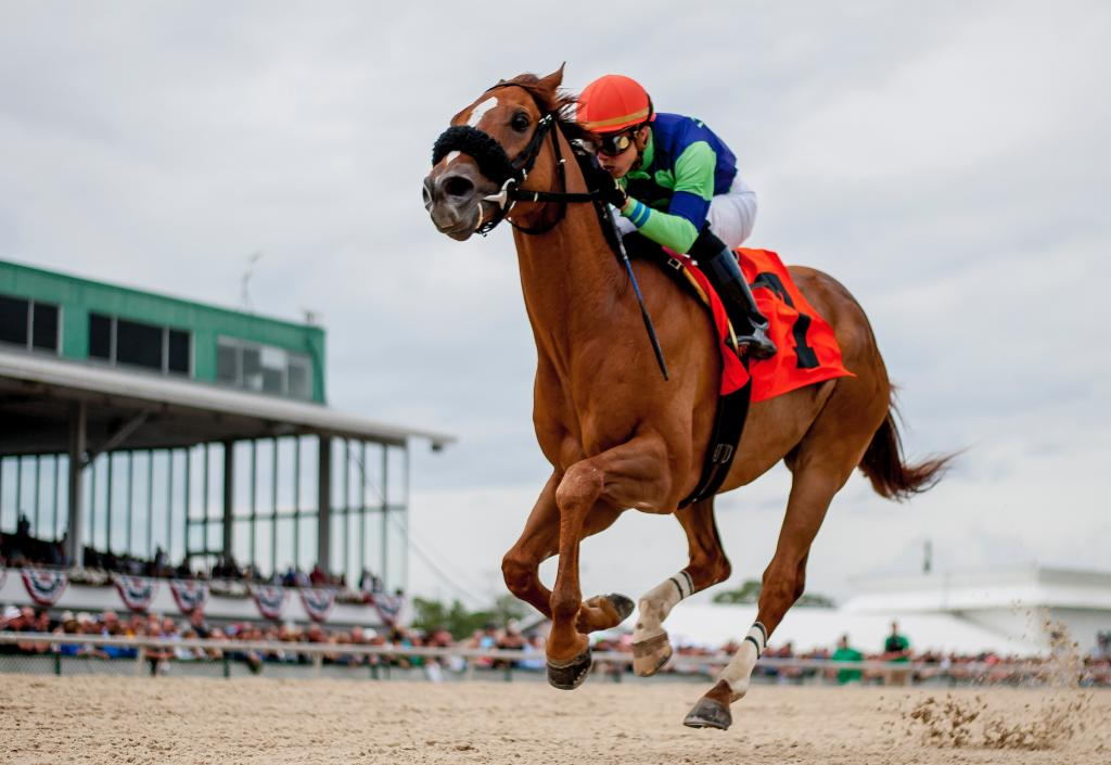 War Story winning the Challenger Stakes in March at Tampa Bay Downs. (Eclipse Sportswire)