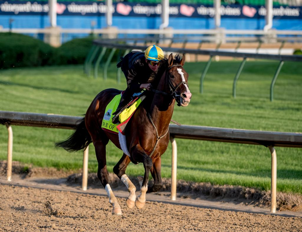 2019 Preakness Stakes winner War of Will (Eclipse Sportswire)