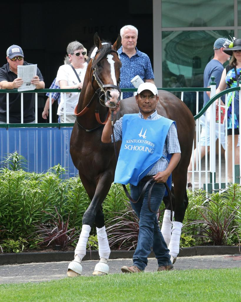 Kentucky Derby seventh-place finisher War of Will. (Coady Photography)