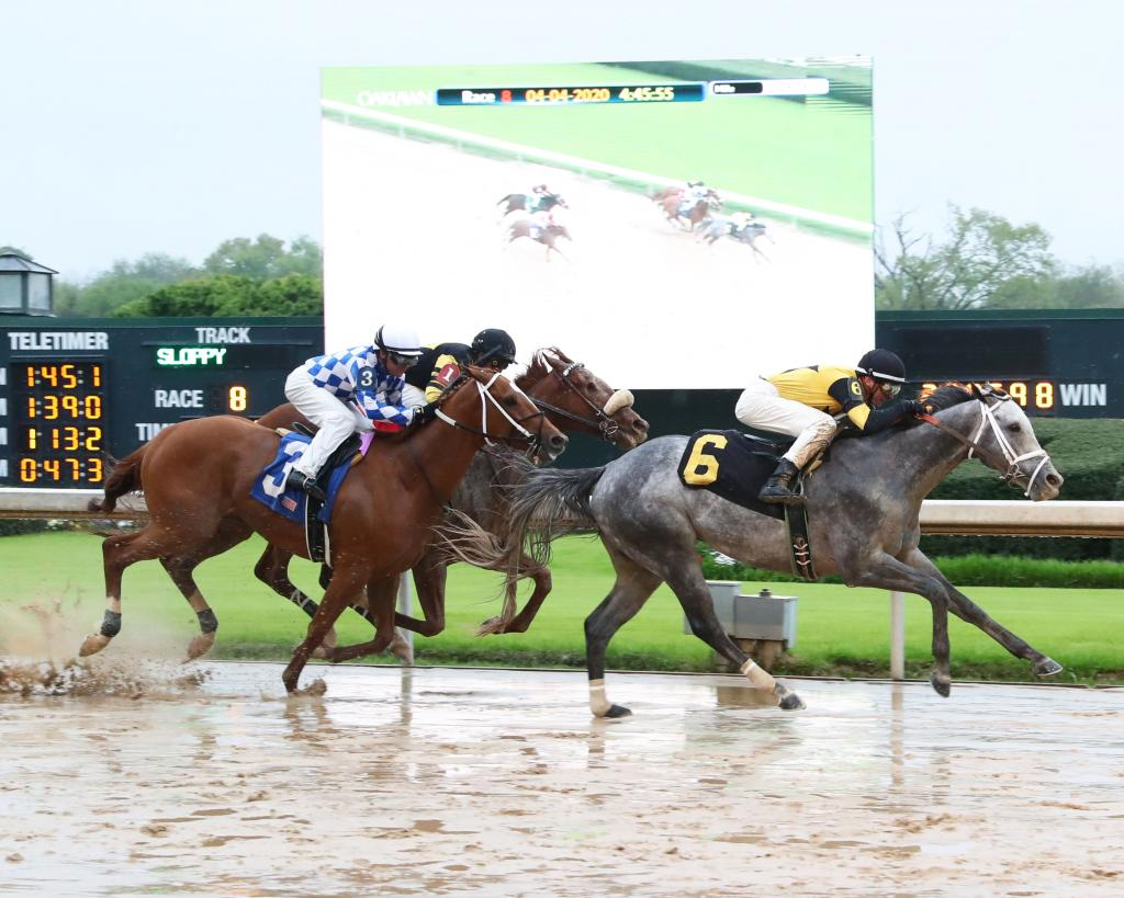 Grade 1-placed Winning Impression won an April 4 race at Oaklawn Park, above, but he subsequently was disqualified..