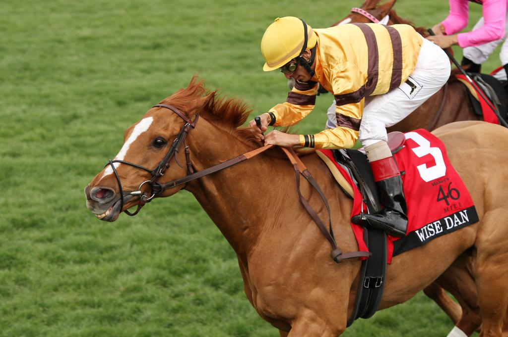 Wise Dan wins the 2014 Maker's 46 Mile at Keeneland. (Eclipse Sportswire)