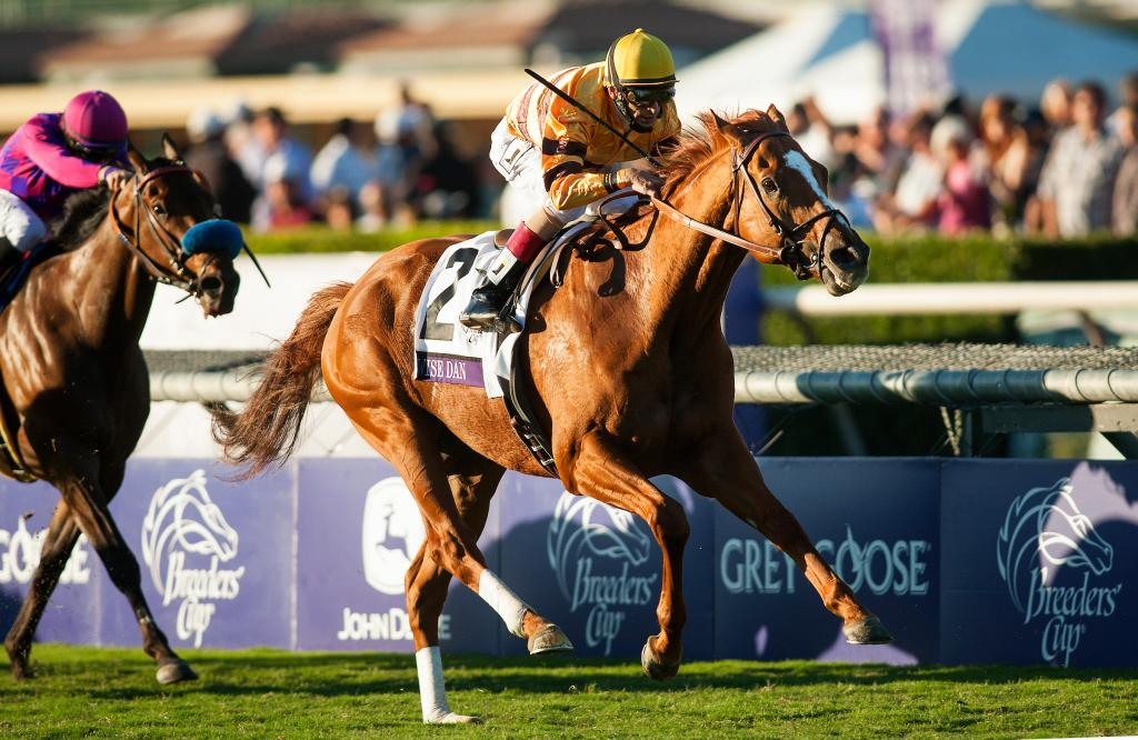 Wise Dan sets a Santa Anita track record in the 2012 Breeders' Cup Mile. (Eclipse Sportswire)