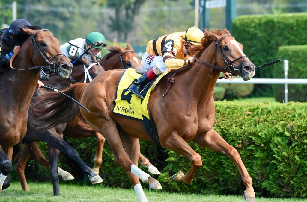 Wise Dan is victorious in the 2014 Bernard Baruch at Saratoga. (Eclipse Sportswire)