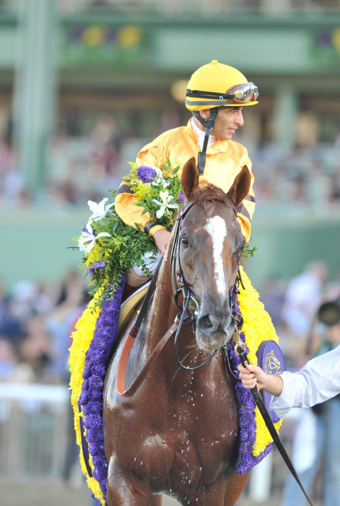 Wise Dan and Johnny Velazquez after winning the 2012 Breeders' Cup Mile. (Eclipse Sportswire)