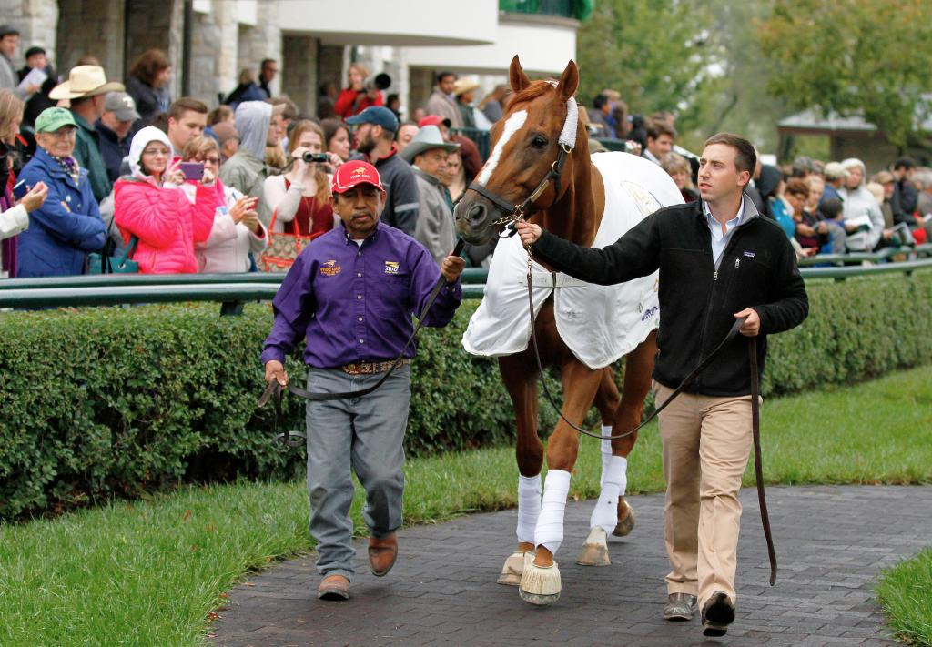 Wise Dan at his 2015 retirement ceremony at Keeneland. (Eclipse Sportswire)