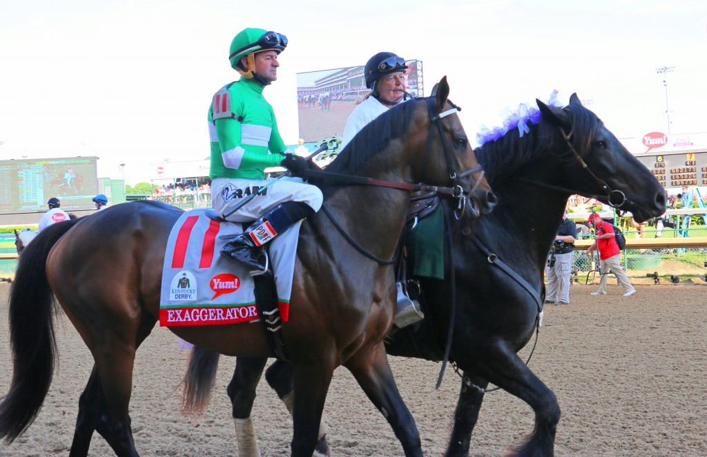 Harley with Exaggerator. (Julie June Stewart photo)