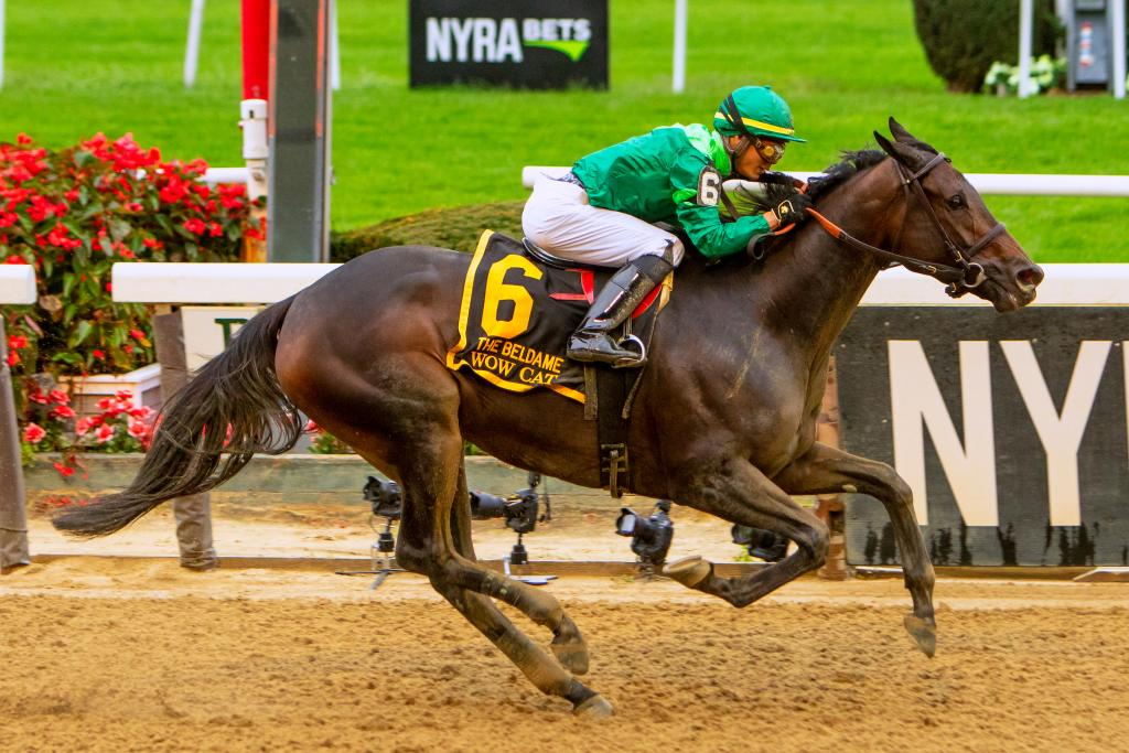Wow Cat winning the Grade 1 Beldame Stakes on Oct. 6 at Belmont Park. (Eclipse Sportswire)