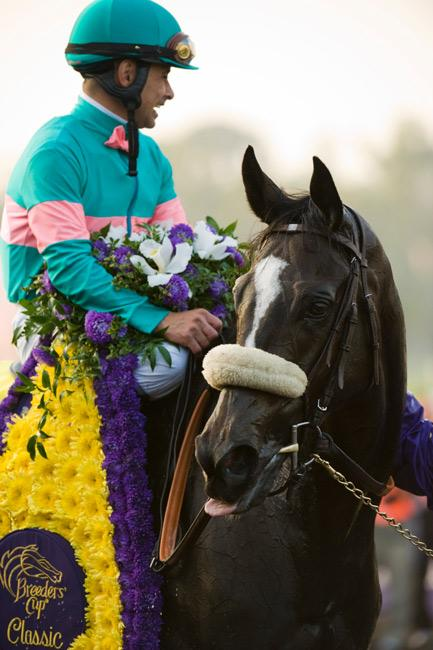 Zenyatta after winning the 2009 Breeders' Cup Classic. (Eclipse Sportswire)