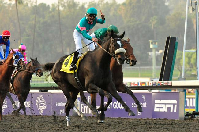 Zenyatta became the first horse to win the Breeders' Cup Distaff and Breeders' Cup Classic. (Eclipse Sportswire)