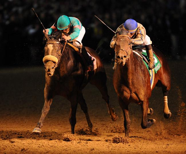One of Zenyatta's most memorable moments came in the 2010 Breeders' Cup Classic where she finished a close second to Blame. (Eclipse Sportswire)