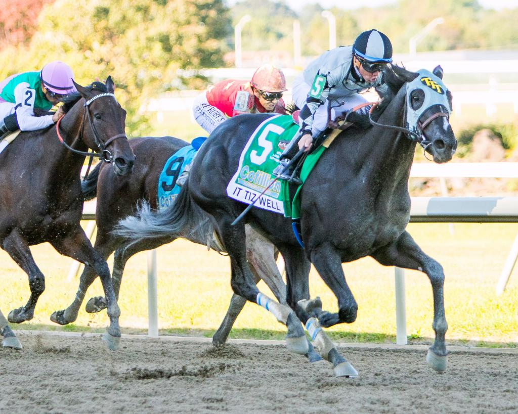 It Tiz Well won the Cotillion Stakes. (Eclipse Sportswire)