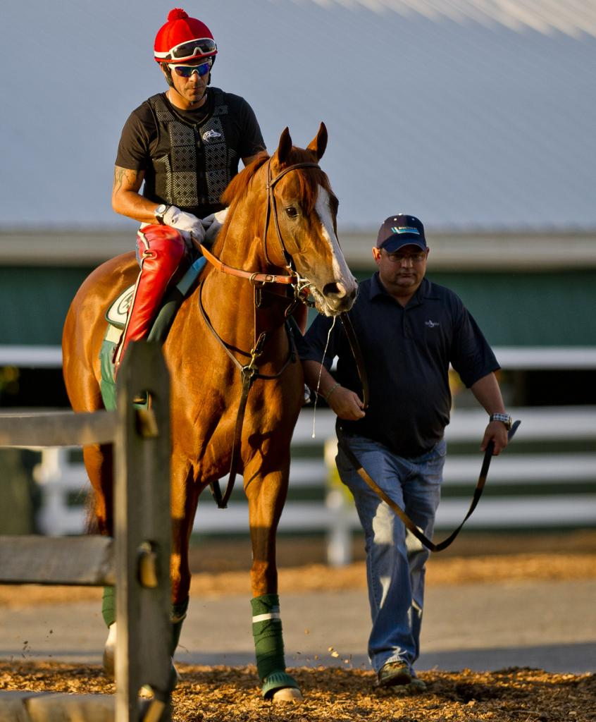 Slideshow Chrome Settles In At Pimlico America S Best
