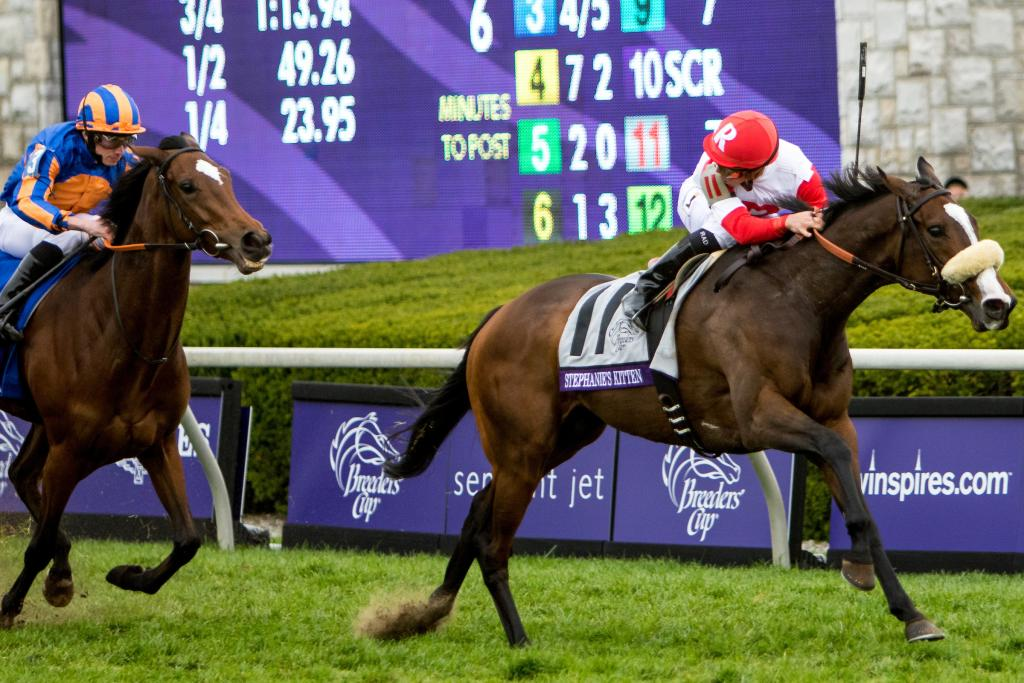 Stephanie's Kitten rallied from last to first under Irad Ortiz Jr. to win the Breeders' Cup Filly and Mare Turf.