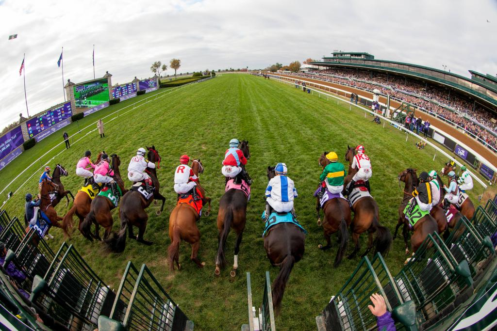 The start of the Breeders' Cup Juvenile Fillies Turf.