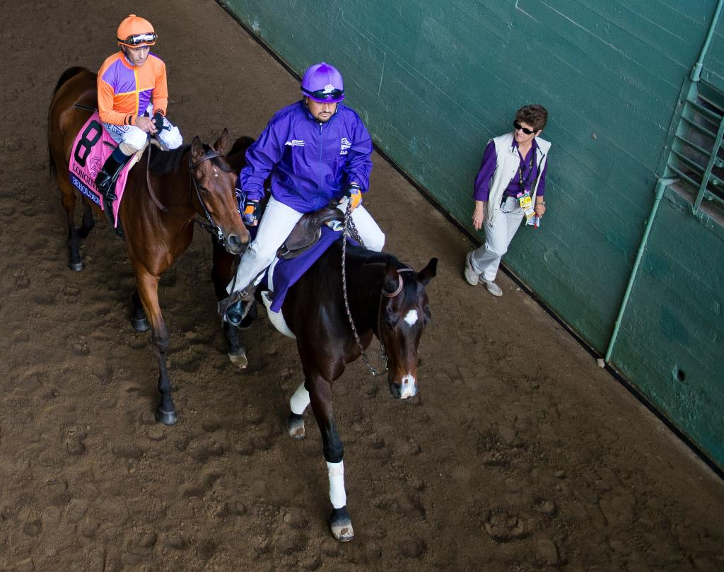 Beholder walks out to the track before the Breeders' Cup Distaff with Hall of Fame jockey Gary Stevens aboard. (Eclipse Sportswire)