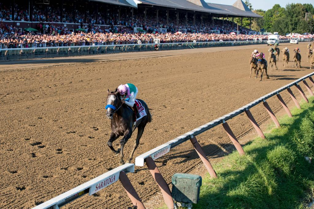 Arrogate winning Travers Stakes. (Eclipse Sportswire)