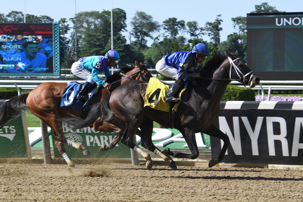Curlin Stakes runner-up Endorsed. (Adam Coglianese/NYRA)