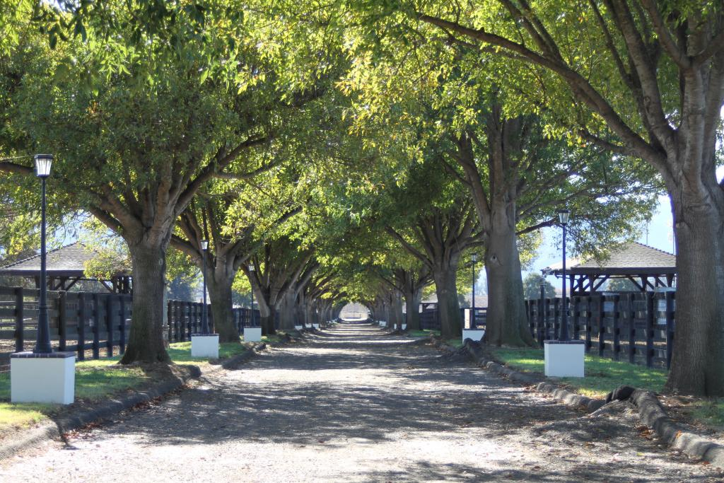 Entrance to Barton Thoroughbreds. (Courtesy of TDN/Jill Williams)