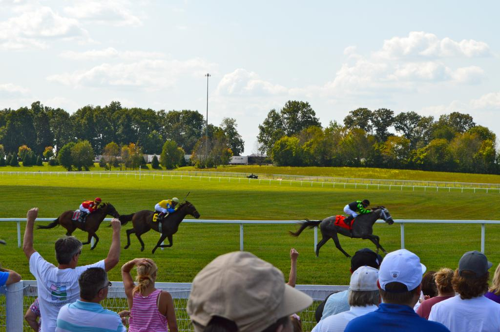 Horses race down the stretch. (Sara Dacus photo)