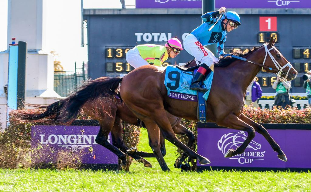 Stormy Liberal repeated in the Turf Sprint with a late rush under Drayden Van Dyke. (Eclipse Sportswire)