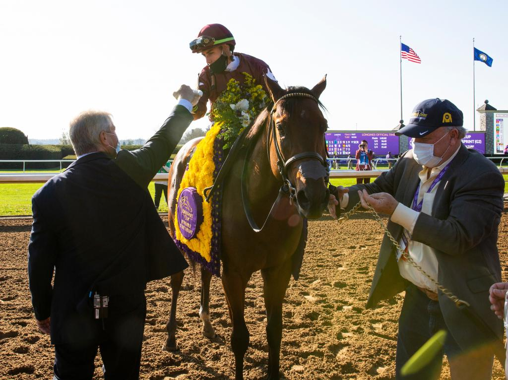 Golden Pal won the Breeders' Cup Juvenile Turf Sprint. (Eclipse Sportswire)
