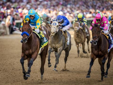American Pharoah Kentucky Derby Eclipse Sportswire