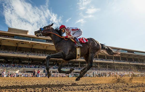 2019 Santa Anita Derby Cheat Sheet America S Best Racing