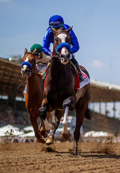 2019 Longines Kentucky Oaks Cheat Sheet America S Best