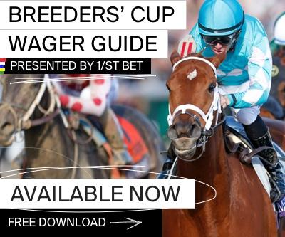 Breeders cup betting strategy auto betting program