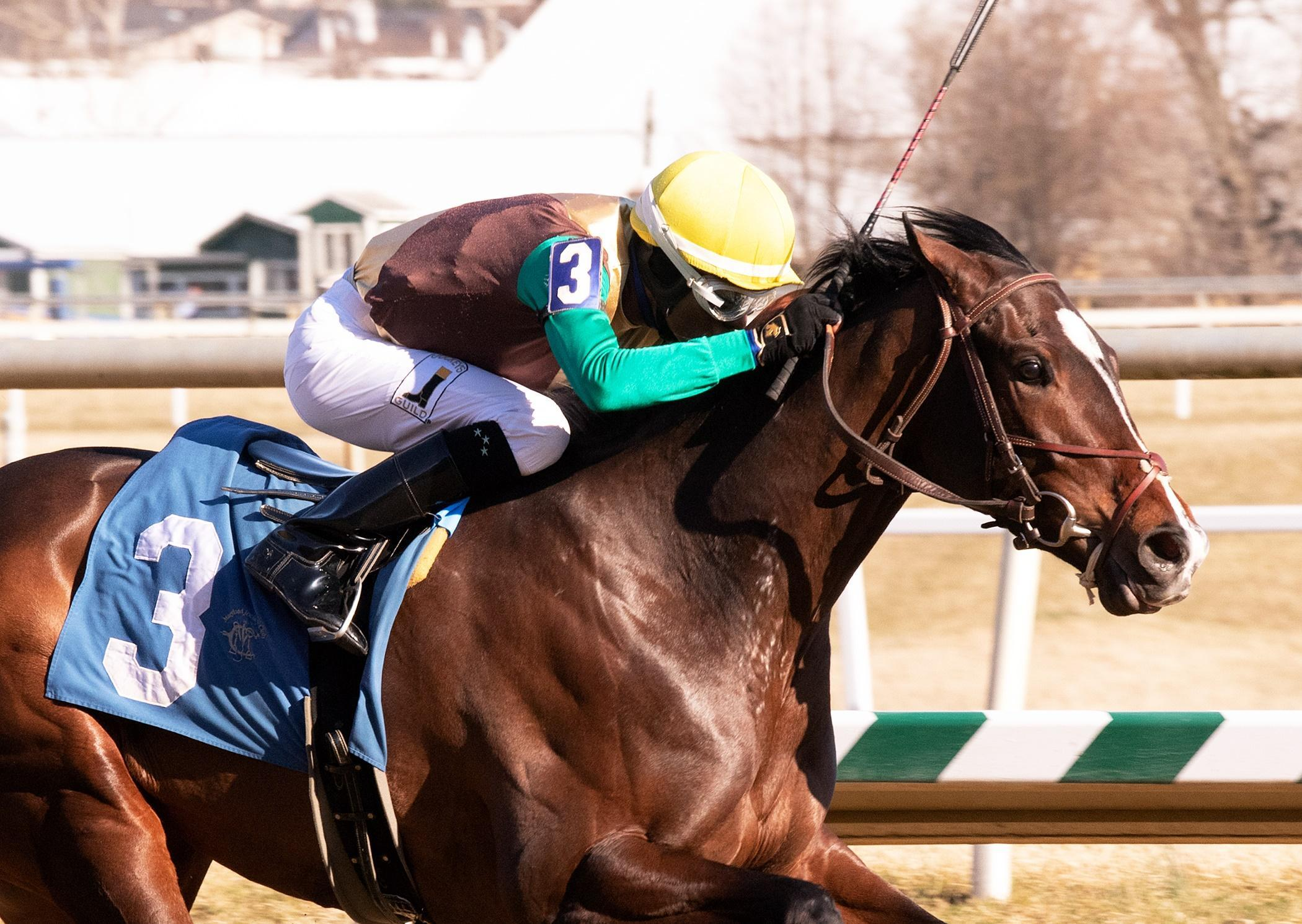 2019 Preakness Stakes Cheat Sheet America S Best Racing