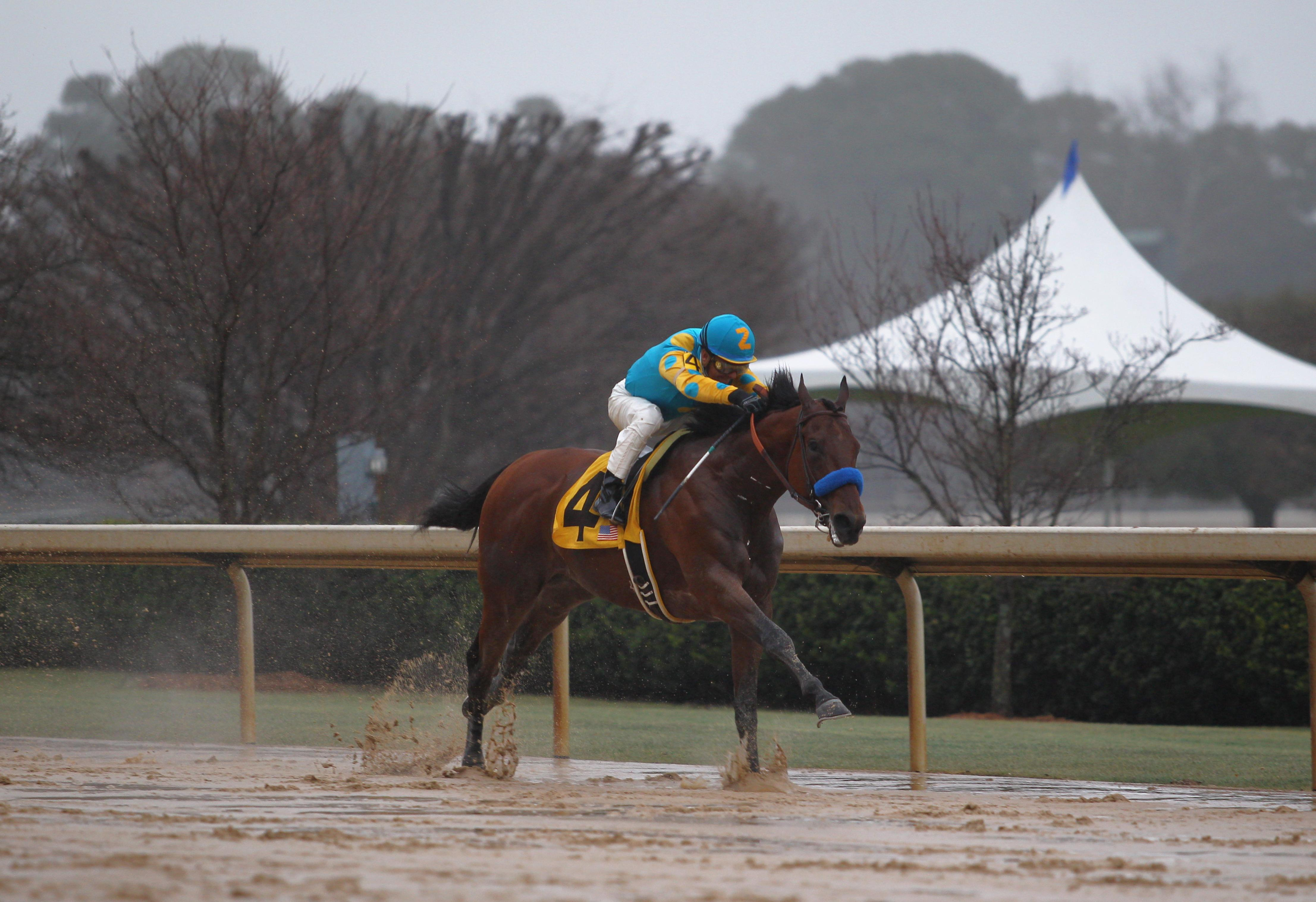 American Pharoah wins a sloppy edition of the Rebel.