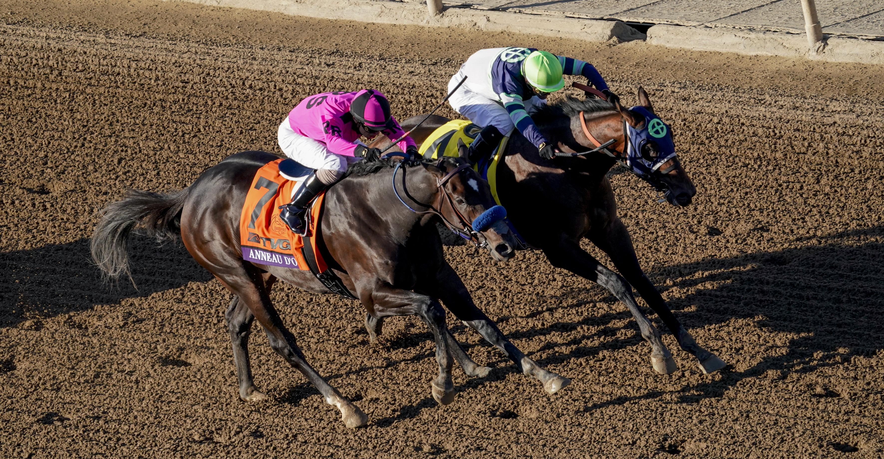 Anneau d'Or battles with Storm the Court in the Breeders' Cup Juvenile.