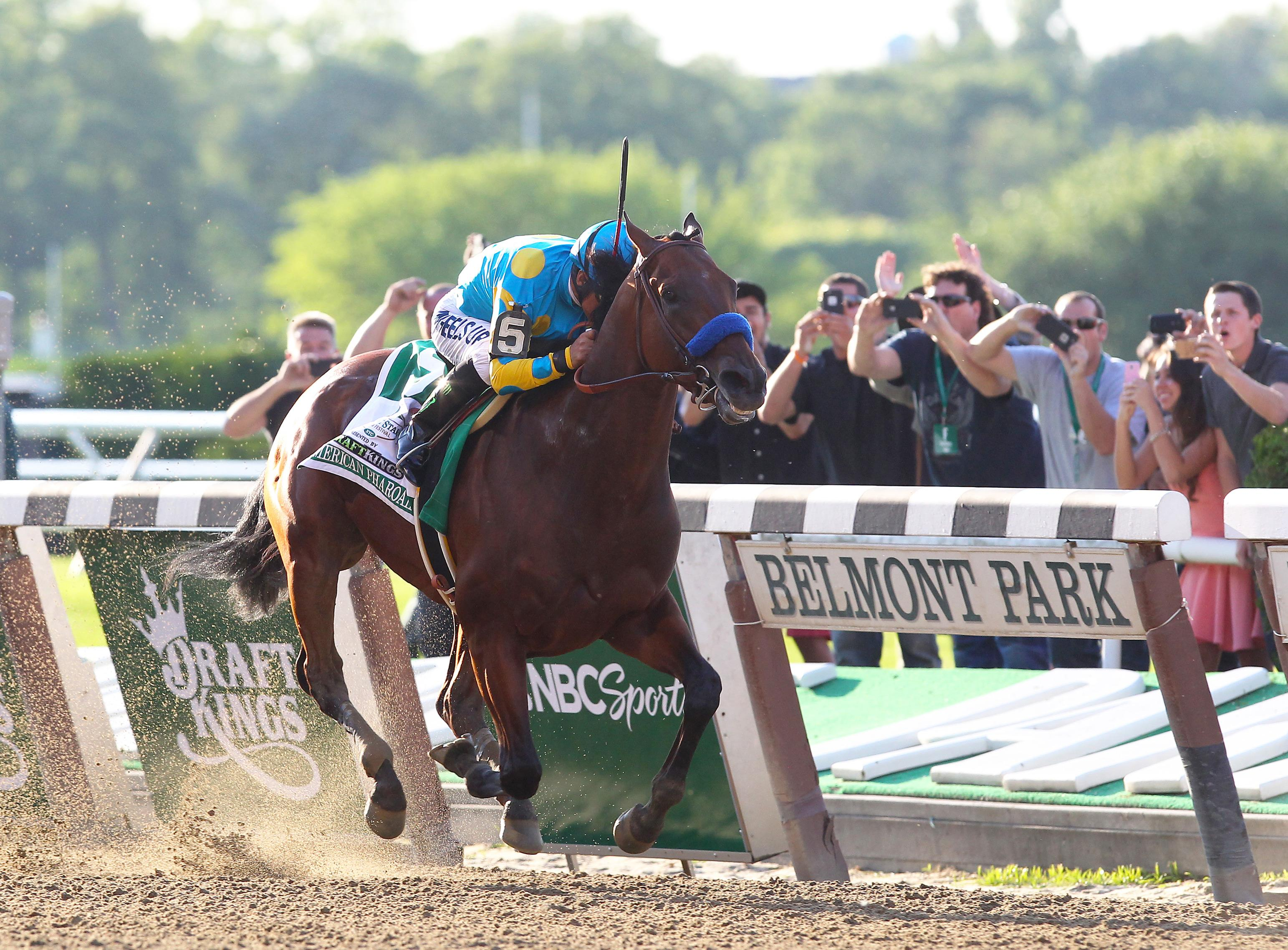 American Pharoah wins the Belmont Stakes.