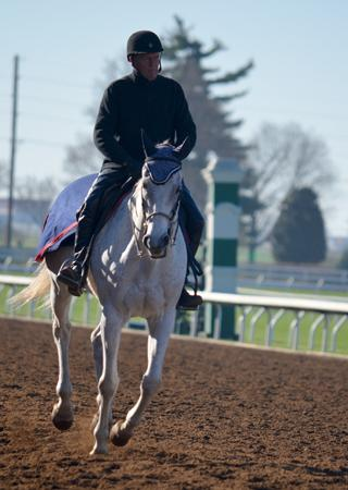 Attfield aboard his pony horse at Keeneland