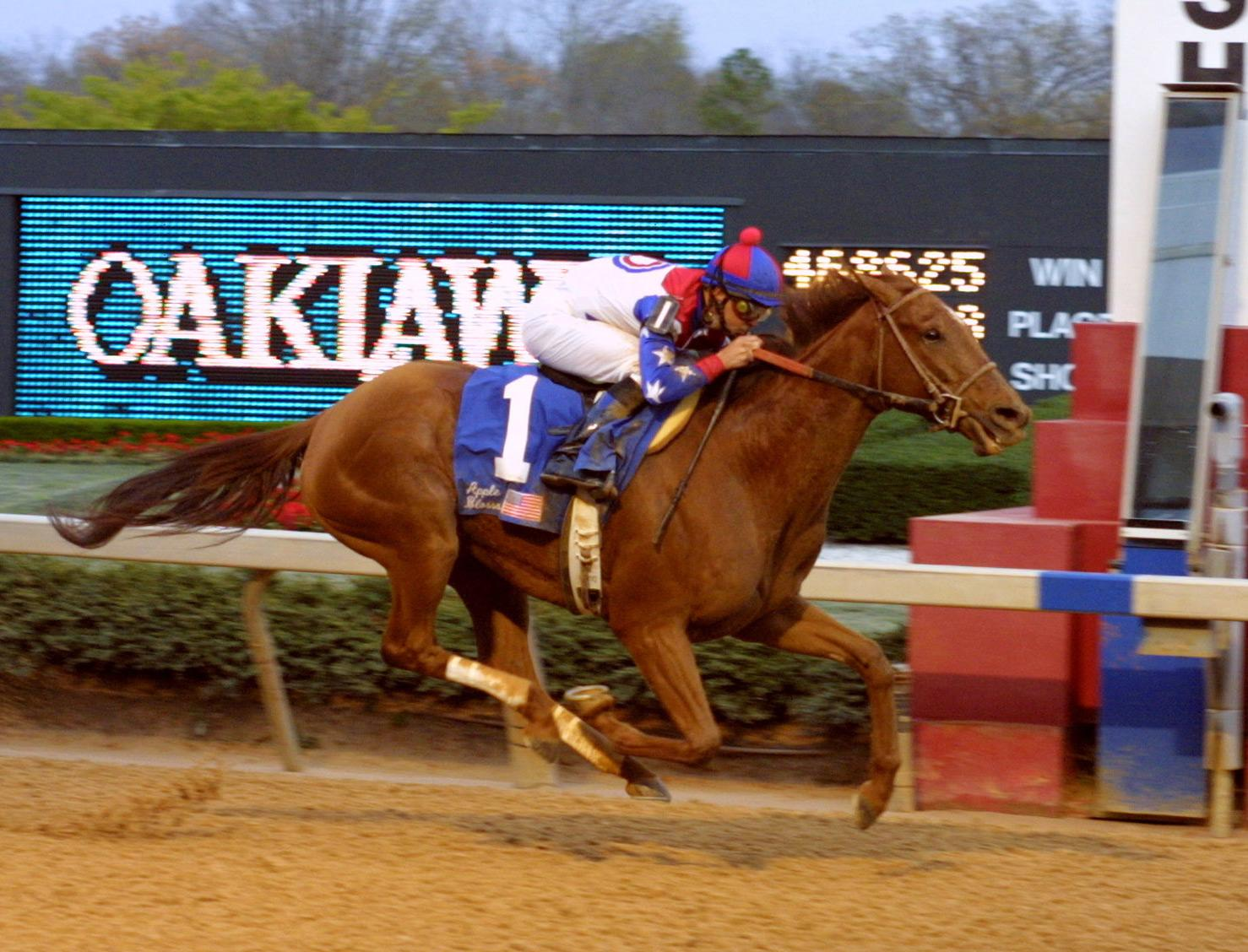 Azeri wins the 2002 Apple Blossom en route to a Horse of the Year title.