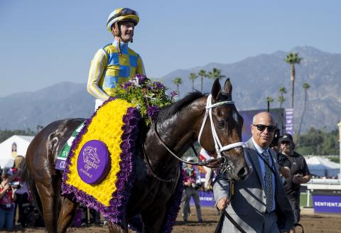 Casse leads Classic Empire into the Breeders' Cup winner's circle.