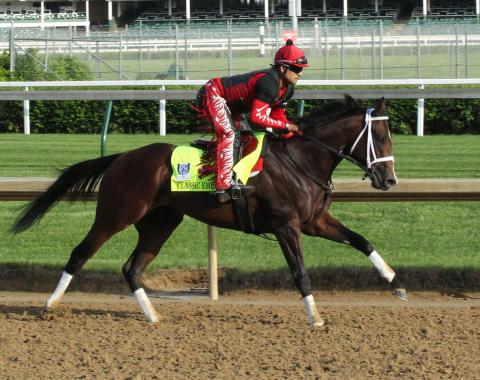 Always Dreaming remains heavy favorite for Preakness
