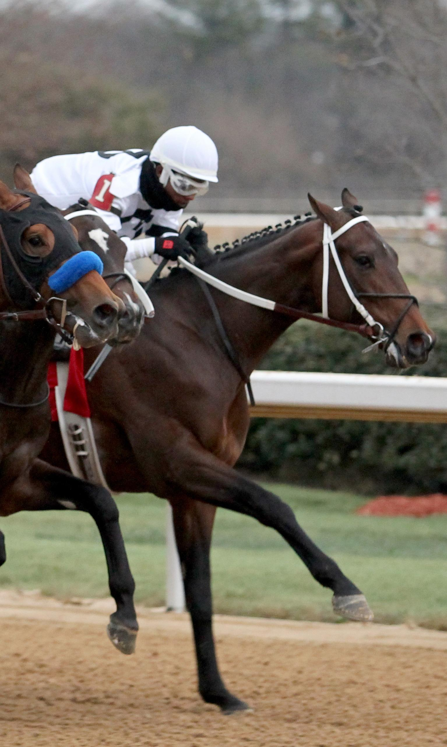 2018 Southwest Stakes Cheat Sheet America S Best Racing