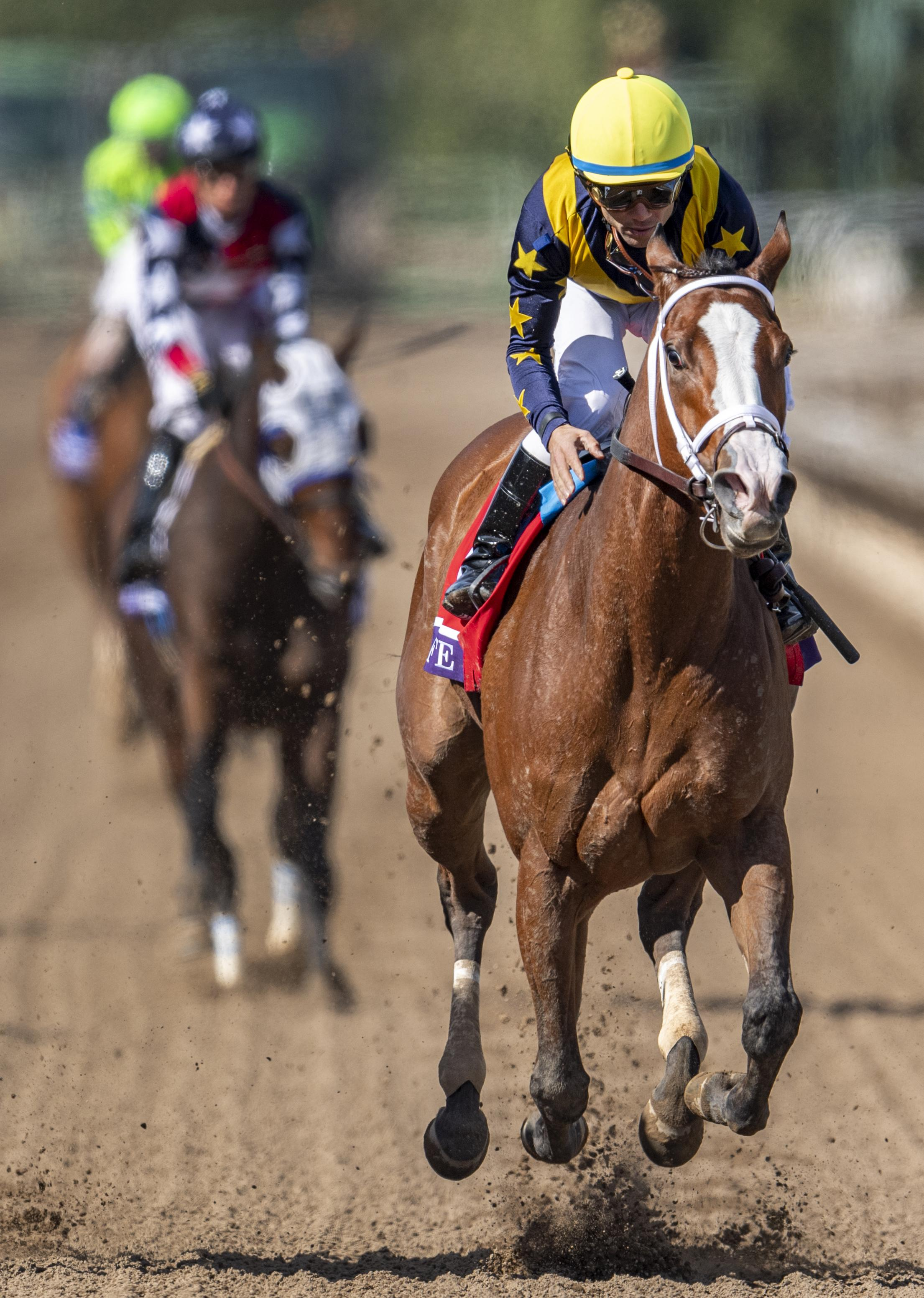 Covfefe wins the Breeders' Cup Filly and Mare Sprint.