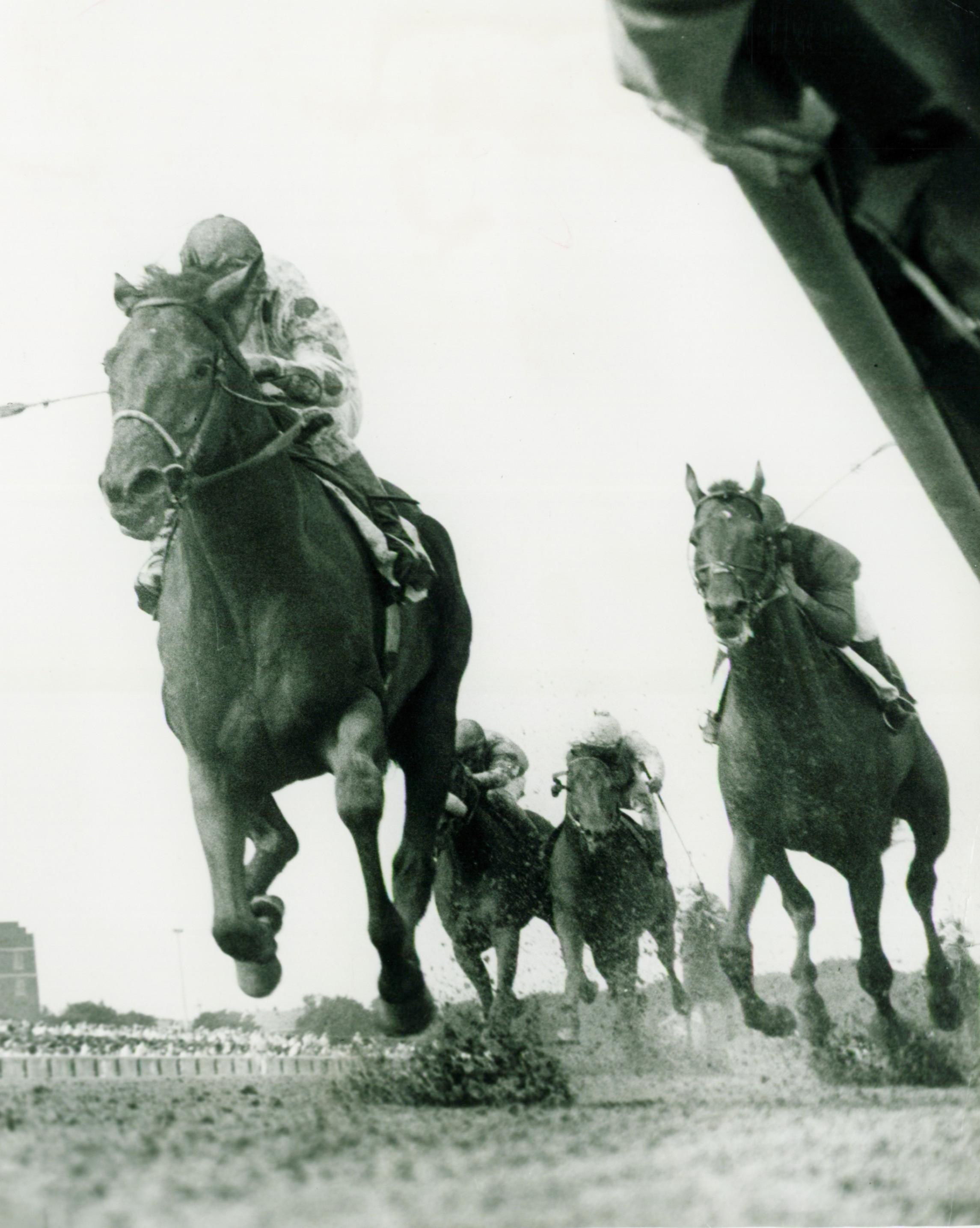 Damascus defeats Dr. Fager in the Brooklyn.