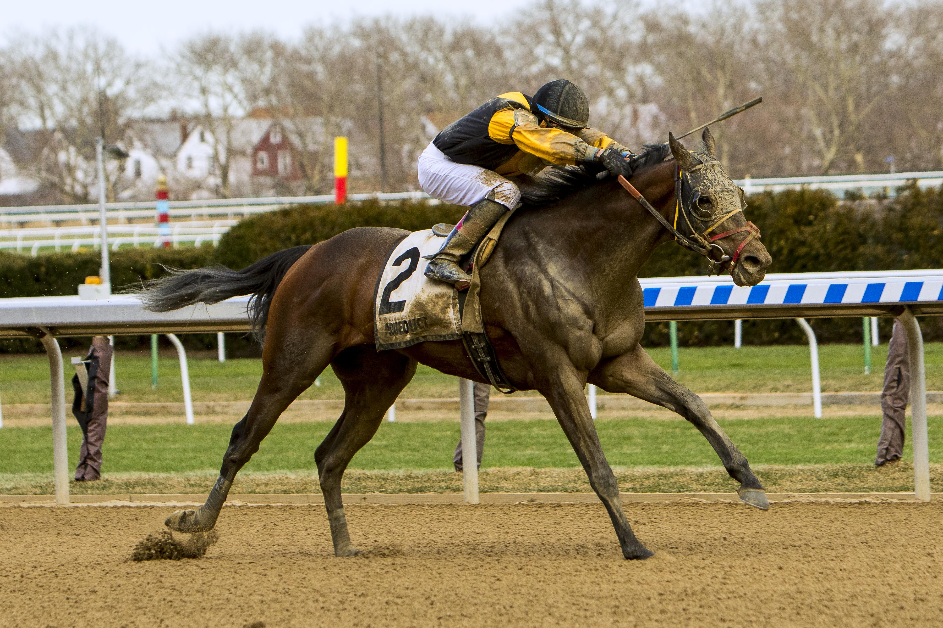 2018 Whitney Stakes Cheat Sheet America S Best Racing