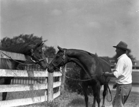 Whirlaway with his dam, Dustwhirl.