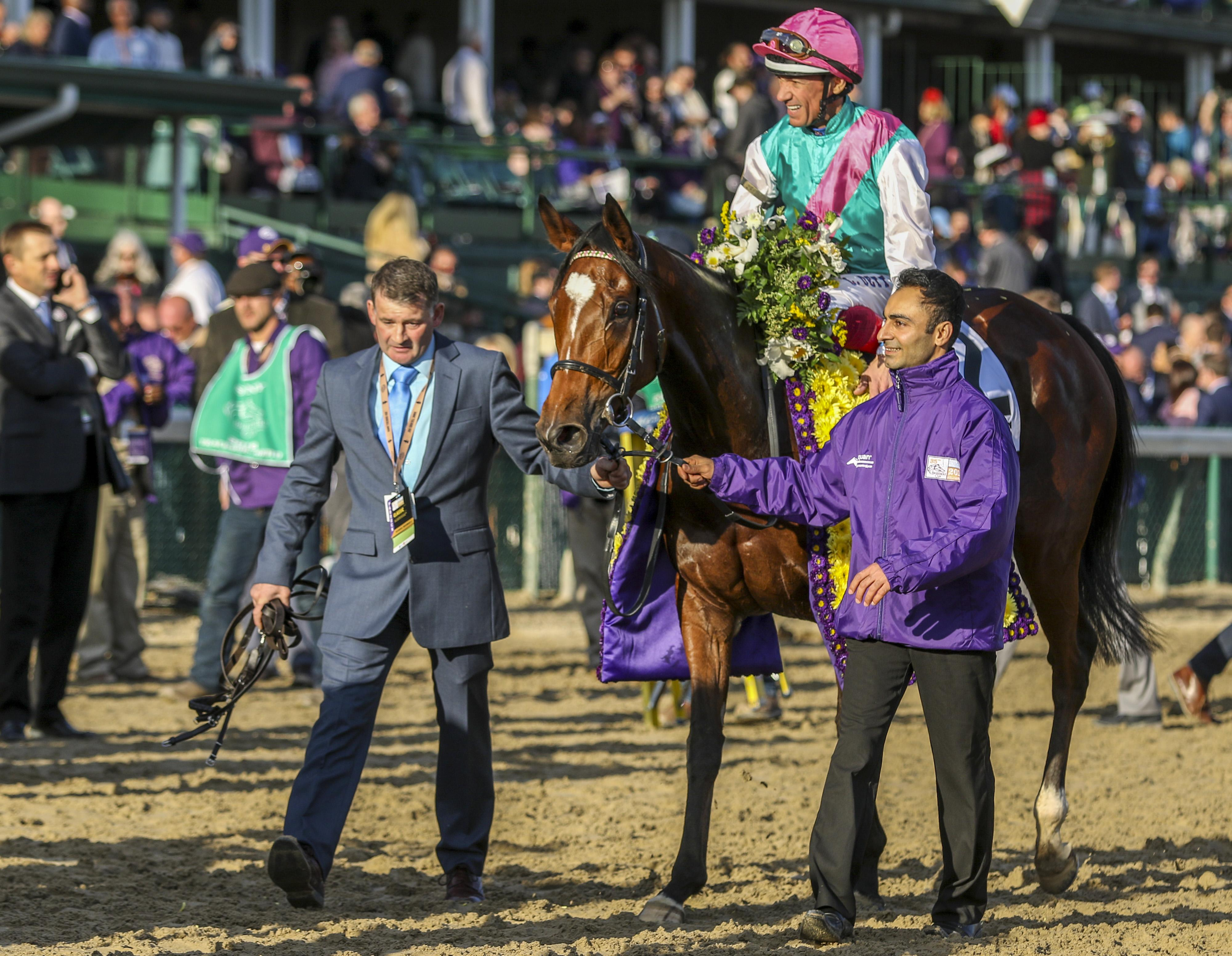 Inside The Numbers 2019 Breeders Cup Challenge Series