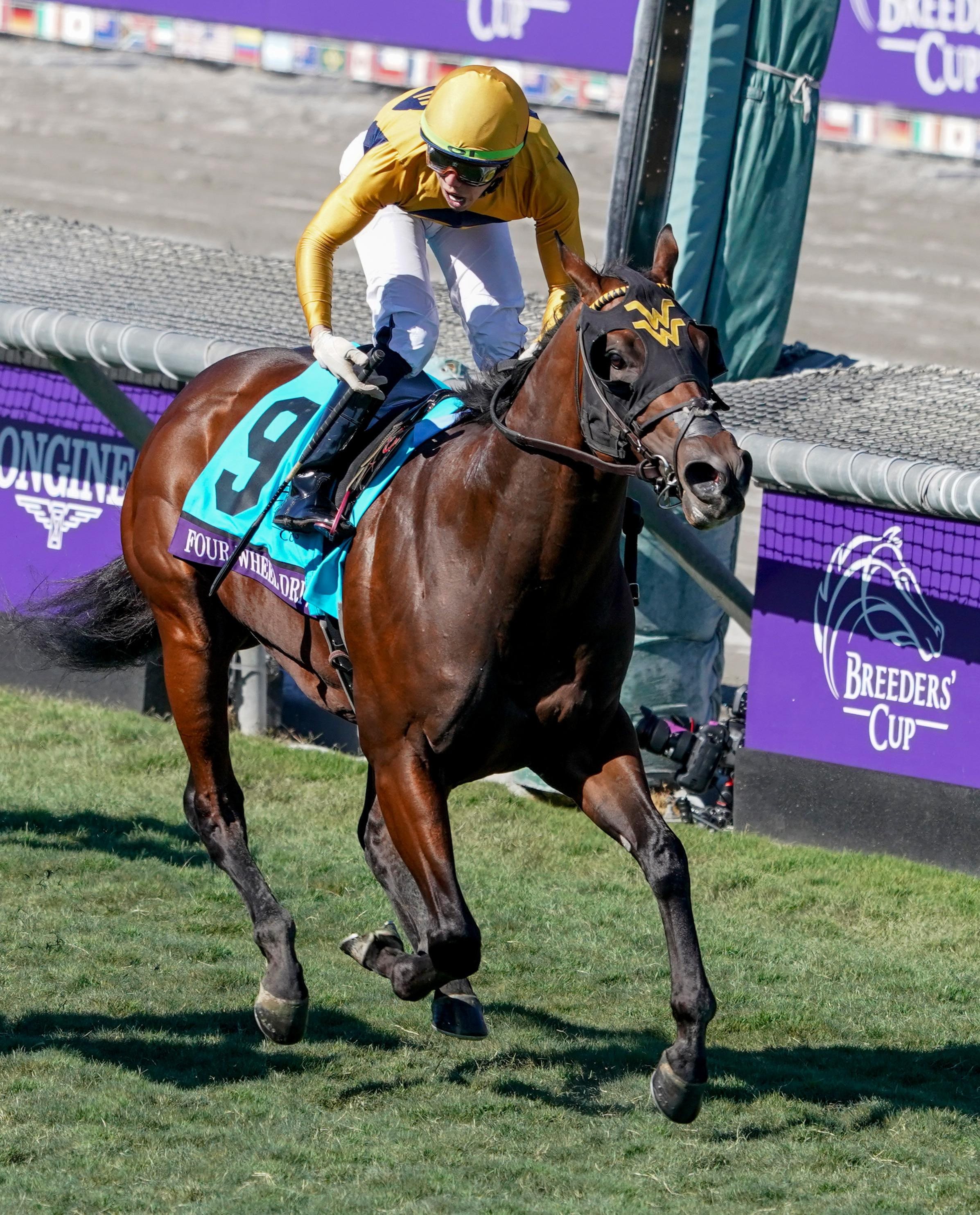 British Idiom Structor Among Standouts On Breeders Cup