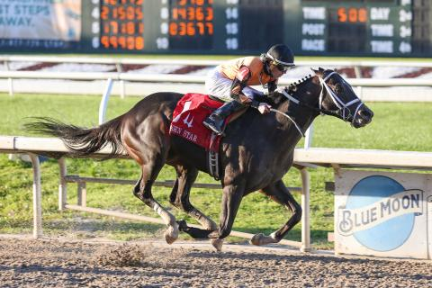 Girvin wins 2017 Louisiana Derby