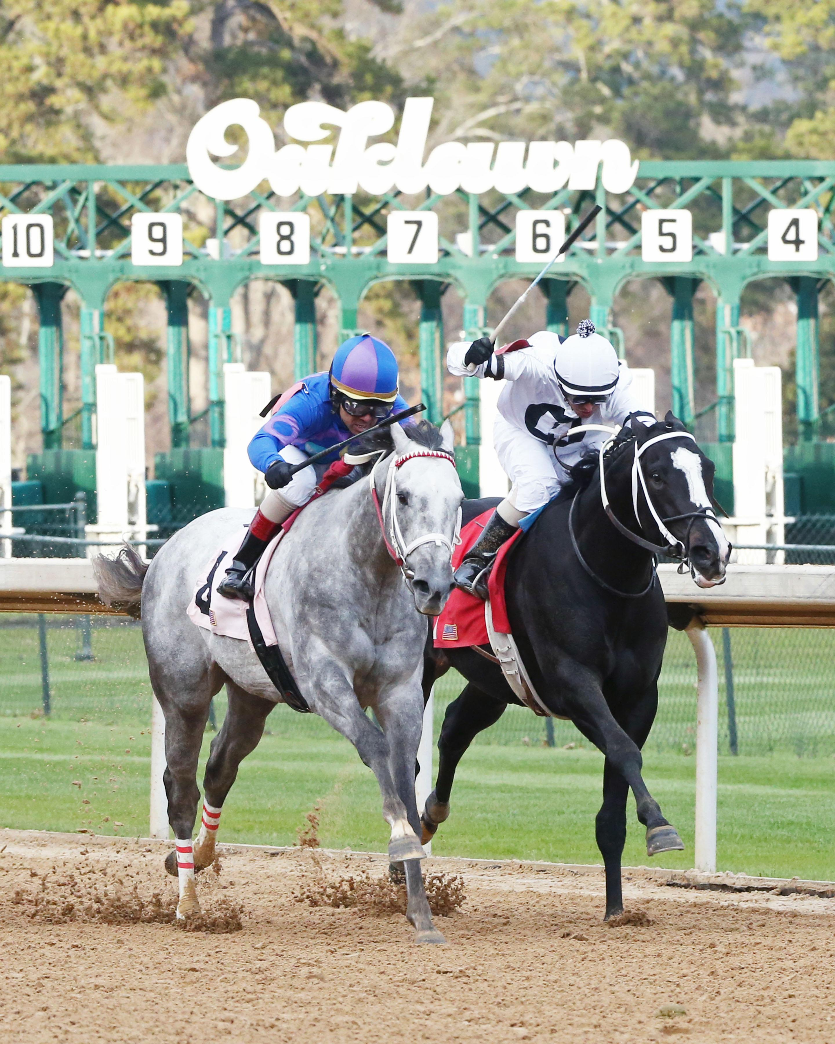 Gray Attempt wins the Smarty Jones on opening day.