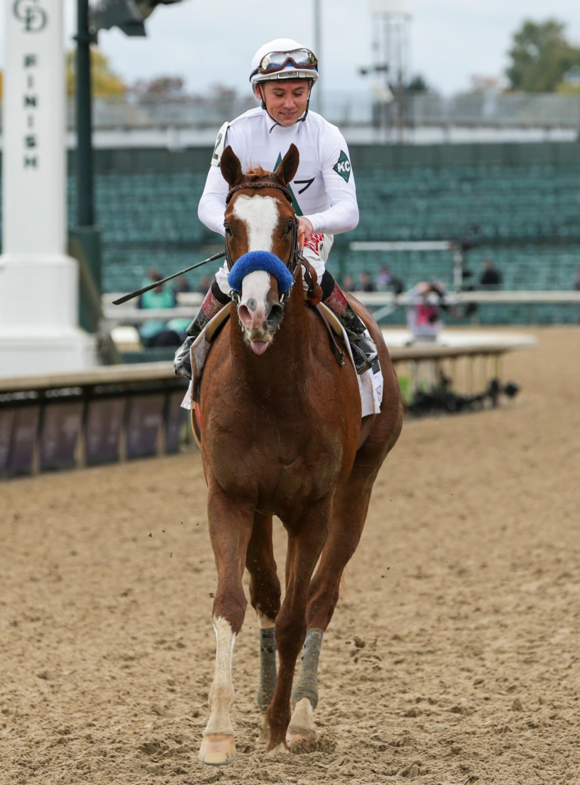 America S Best Horses Presented By Old Smoke Clothing