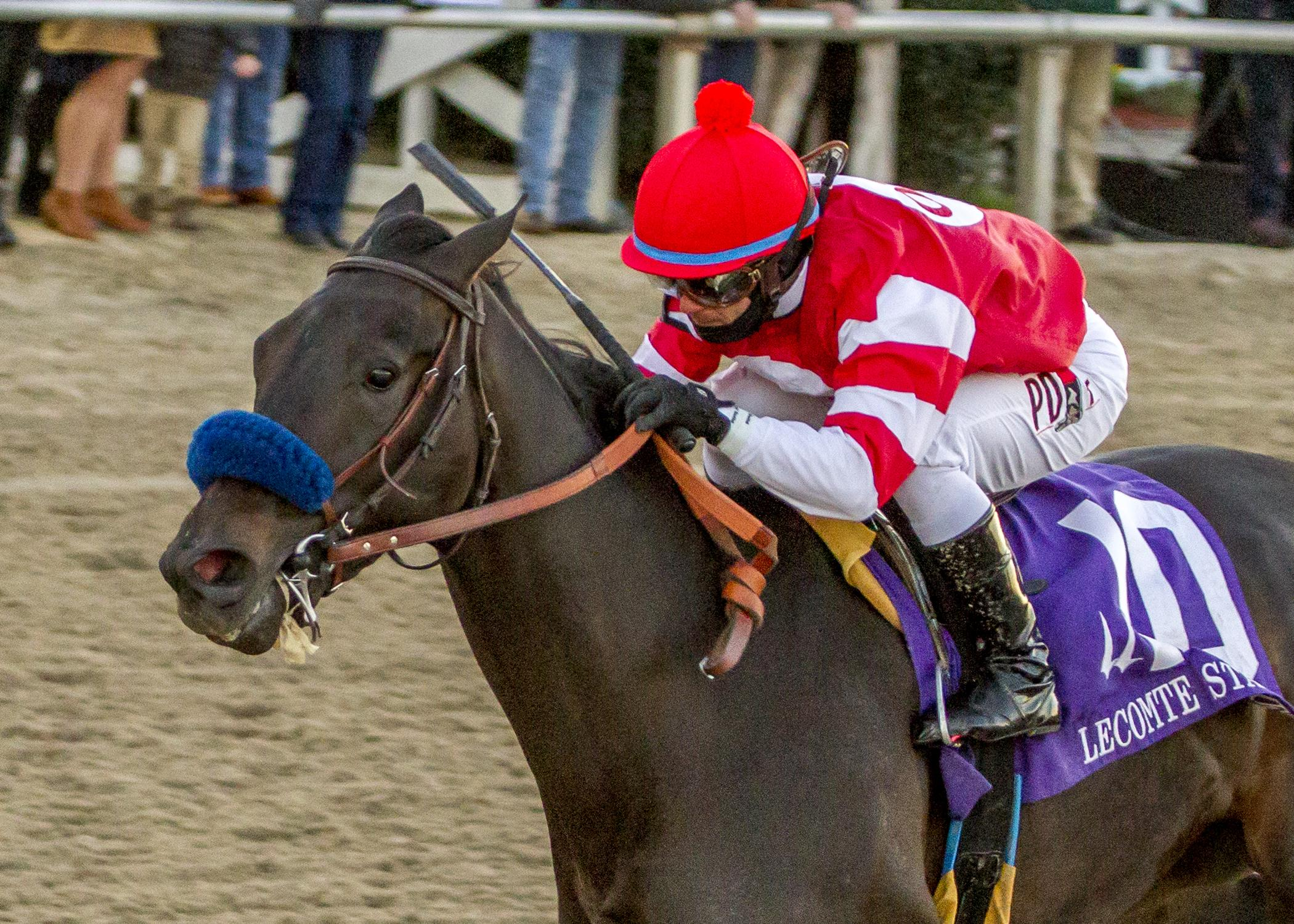 Instilled Regard Lecomte Stakes Kentucky Derby